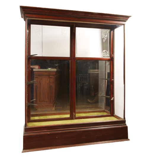 Display Case with Mirror and Windowed Back